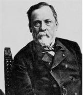 Figura 4. L. Pasteur (1822-1895) oppositore della teoria della generazione spontanea