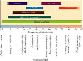 Figura 4. Intervalli di temperatura di crescita dei microrganismi