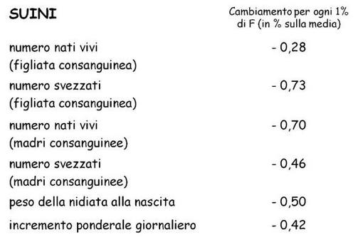 Effetti della consanguineità sui caratteri produttivi e riproduttivi nella specie suina.