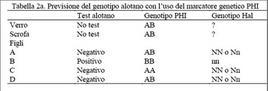 Esempio di linkage tra alleli di due geni associati.