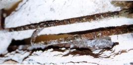 Disgregazione del cemento e ossidazione dei ferri