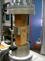 Un'indagine di laboratorio: la prova a compressione