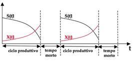 Figura 4– Sequenza di cicli produttivi e tempi morti in un fermentatore discontinuo industriale.