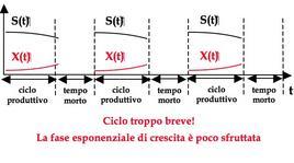 Figura 6– Sequenza di cicli produttivi e tempi morti nel caso di tp troppo breve.