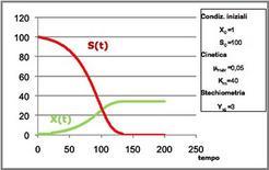 Figura 1– Profili concentrazione-tempo in un fermentatore discontinuo.