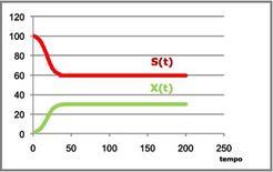 Figura 19– Profili concentrazione-tempo ricavati dalle equazioni [4] e [5].