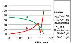 Figura 3– Profili concentrazione-tempo in un fermentatore discontinuo.