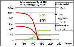 Figura 7 – Profili concentrazione-tempo in un fermentatore discontinuo.