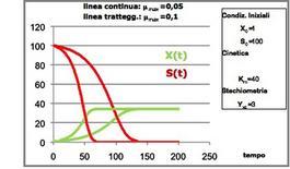 Figura 9 – Profili concentrazione-tempo in un fermentatore discontinuo.
