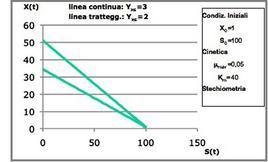 Figura 17– Profili concentrazione-tempo in un fermentatore discontinuo.