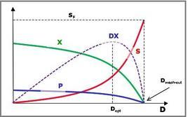 Figura 4 – Condizioni di regime stazionario in un reattore continuo miscelato al variare della dilution rate.
