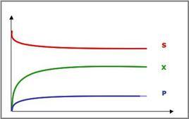 Figura 2 – Profili concentrazione-tempo in un reattore continuo miscelato.