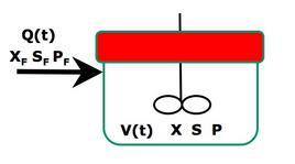 Figura 1 – Schema di un reattore fed-batch.