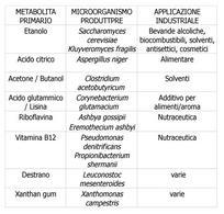Tabella 1 –  Alcuni  metaboliti primari con l'indicazione del microorganismo produttore e delle principali applicazioni industriali.