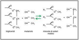 Figura 1 – Schema della reazione di alcoolisi dei trigliceridi.