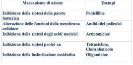Tabella 1 – Classificazione degli antibiotici in base al meccanismo di reazione.
