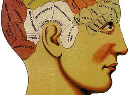 La mente modulare secondo Gall