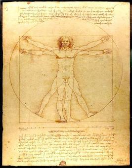 L'uomo vitruviano di Leonardo da Vinci. Fonte: Wikipedia