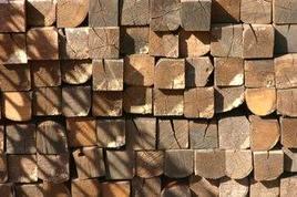 Semilavorati derivanti da bosco ceduo