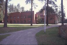 Il municipio e le case rade si dispongono nel bosco indistinto.