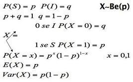 Equazione della variabile di Bernoulli
