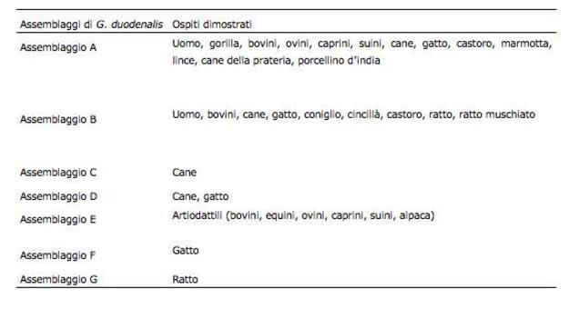 Assemblaggi di Giardia duodenalis  attualmente riconosciuti dalla comunità scientifica internazionale