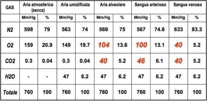 Valori approssimativi di un soggetto maschio sano al livello del mare