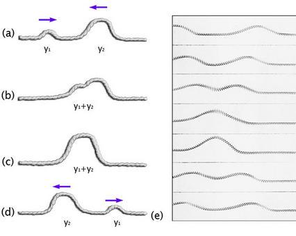 Interferenza di due impulsi ondulatori positivi su una corda: dopo aver interferito, sommandosi,  i due impulsi continuano a propagarsi con la stessa ampiezza e velocità che avevano prima dell'interferenza. (Immagine modificata da Brooks, Cole – Thomson, 2006).