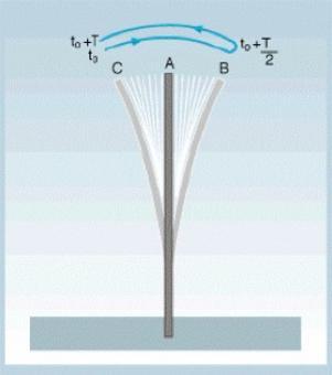 Oscillazioni del rebbio di un diapason (suono di frequenza ben definita) (da UniTo)