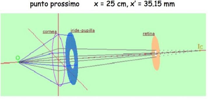Formazione dell'immagine di una sorgente puntiforme nel punto prossimo da parte della sola cornea (Immagine da: I.N.F.N.)
