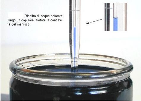 Se un capillare aperto ad entrambe le estremità è immerso in acqua, il liquido sale nel capillare formando all'interno di esso un menisco concavo (Fun science).
