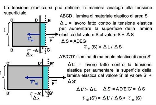 Definizione operativa di tensione elastica di una superficie elastica