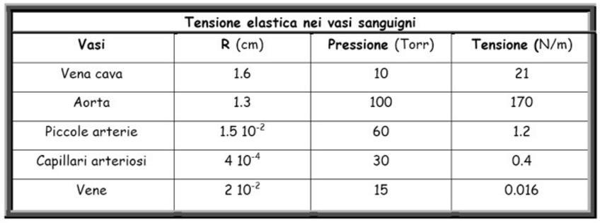 La tensione elastica di equilibrio di un vaso si trova applicando la legge di Laplace per una superficie cilindrica, se sono noti il raggio del vaso e la differenza di pressione tra l'interno e l'esterno di esso