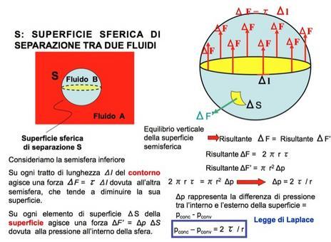 Legge di Laplace per una superficie sferica di separazione tra due fluidi