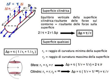 Legge di Laplace per una superficie di separazione tra due fluidi cilindrica e di forma qualsiasi