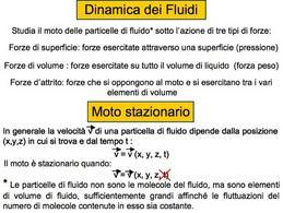 Dinamica dei liquidi: forze agenti, stazionarietà