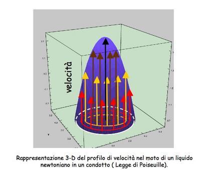 Rappresentazione 3D del profilo di velocità nel moto alla Poiseuille