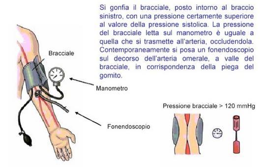 Misura della pressione aortica: occlusione dell'arteria brachiale (da UniPg )