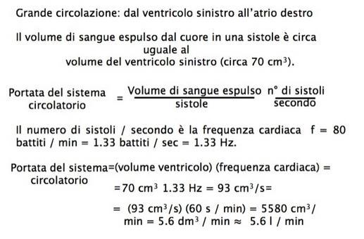 Calcolo della portata cardiaca, che rappresenta anche la portata del sistema circolatorio ( circolazione sistemica)