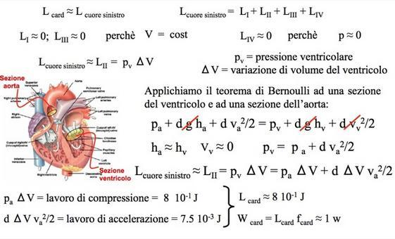 Calcolo del lavoro cardiaco del cuore sinistro