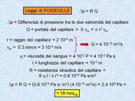 Calcolo della caduta di pressione in un capillare attraverso l'applicazione della legge di Poiseuille