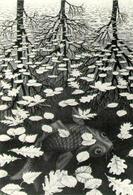 Escher – I tre mondi