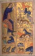 Adamo dà nome agli animali. Miniatura da un manoscritto del XII secolo del trattato enciclopedico Etymologiae in venti libri di Sant'Isidoro di Siviglia.
