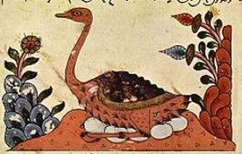 Dipinto tratto da una versione del Libro sugli animali di al-Jahiz (Siria).  Fonte: Wikipedia.