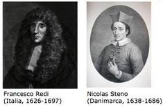 Fonti: Francesco Redi (Italia, 1626-1697), Nicolas Steno  (Danimarca, 1638-1686).