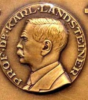 Karl  Landsteiner  (1868-1943). Fonte: wikipedia