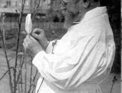 Carl Correns (1864–1933). Fonte wikipedia.