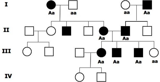 Allora possiamo proporre che il tratto sia dominante. In tal caso i genitori che mostrano il tratto sono eterozigoti e possono trasmettere anche l'allele recessivo. In tal caso può nascere un individuo normale omozigote recessivo da due genitori malati.