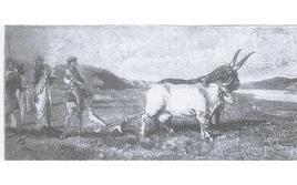 Romolo traccia il pomerio di Roma (illustrazione di L. Pogliaghi, in F. Bertolini, Storia di Roma, Milano Fratelli Treves editori 1886).