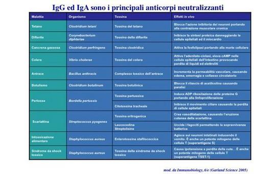 """Le principali tossine batteriche. Immagine modificata da """"Immunobiology"""" di Janeway et al., Casa Editrice Garland."""